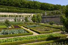 French formal garden Stock Image