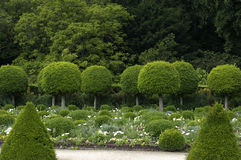 French formal garden Royalty Free Stock Photography