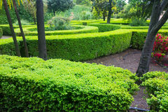 French formal garden Royalty Free Stock Image