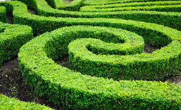 Free French Formal Garden In Paris Stock Image - 34857311