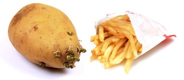 French fries Stock Images