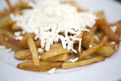 French fries. Close-up of french fries with cheese stock images