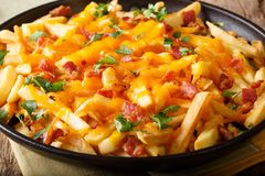 French fries baked with cheddar cheese, bacon and parsley closeup. horizontal. French fries baked with cheddar cheese, bacon and parsley closeup on a plate stock images