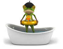 French frog Stock Images