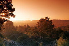 The French Gâtinais Natural Regional Park in Ile de France. Malmontagne mound in Fontainebleau forest Stock Photography