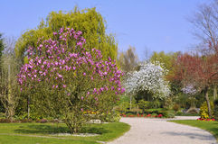 French garden in Normandy Stock Photography