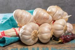 French garlic braid close up on blue wooden table. French white garlic braid close up on blue wooden table stock image