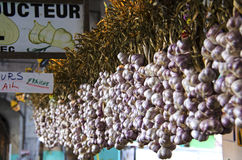 French Garlic Hanging Display Stock Images