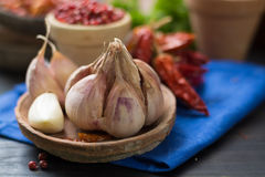 French garlic and red hot chili cayenne peppers dried, variety - Royalty Free Stock Images