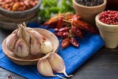 French garlic and red hot chili cayenne peppers dried, variety - Royalty Free Stock Photography