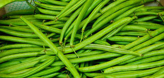 French Green Beans Stock Photo