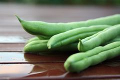 French Green Beans 2 Stock Photos