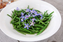 French green beans with edible blue borage flowers and garlic Stock Image