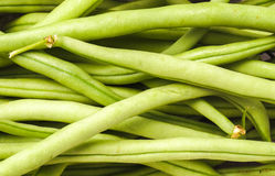 French Green Beans, Haricots Verts. Delicious Vegetable, French Green Beans or Haricots Verts Royalty Free Stock Photo