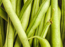 French Green Beans, Haricots Verts Stock Image