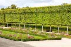 French green garden Stock Photo