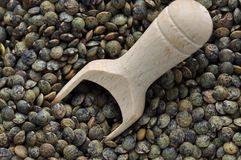 French Green Lentils Stock Photography