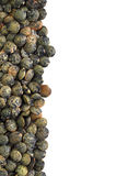 French Green Lentils Royalty Free Stock Photos