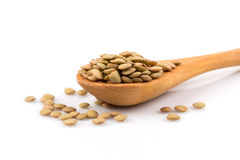 French green lentils in bowl Royalty Free Stock Photography