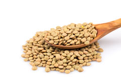 French green lentils in bowl Stock Images