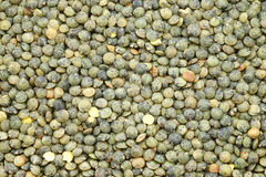 French green lentils (lentilles du Puy) Royalty Free Stock Photography