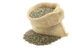 French green lentils (lentilles du Puy) Royalty Free Stock Photos