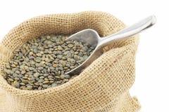 French green lentils (lentilles du Puy) Stock Photos