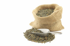 French green lentils (lentilles du Puy) Stock Photography
