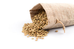 French green lentils in sack Stock Images