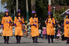 French Guiana's Annual Carnival 2011 Stock Image