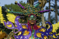 French Guiana's Annual Carnival 2011 Royalty Free Stock Photography