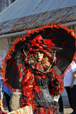 French Guiana's Annual Carnival February 7, 2010. A mysterious parade-goer participates in French Guiana's Annual Carnival February 7, 2010 Royalty Free Stock Photography