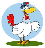 French hen chicken Royalty Free Stock Photo