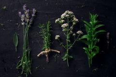 French herbs on the black desk. Top view royalty free stock image