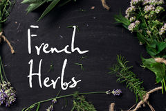 French herbs on the black desk Stock Images