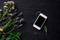 French herbs and phone on the black desk Stock Photography