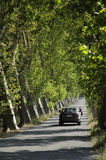 French highway tree lined southern France Stock Image