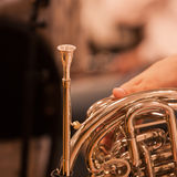French horn fragment Stock Images