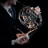 French horn Royalty Free Stock Photo