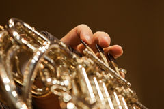 French horn in the hands of a musician closeup Stock Photos