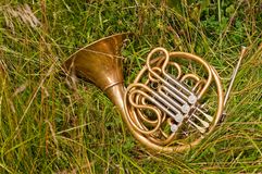 French Horn Instrument Royalty Free Stock Image