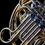 French Horn Isolated on Black Stock Photo