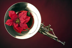 French Horn and Poinsettia Isolated. A gold brass French horn and red poinsettia flower isolated  against a spotlight red background Royalty Free Stock Image