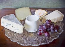 French and Italian cheese assortement Royalty Free Stock Image