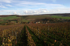 French landscape in champagne Stock Photo