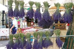 French lavender market stall Stock Image