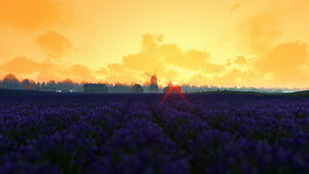 French lavender village with old windmill against morning sunrise stock footage