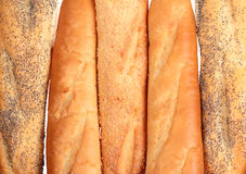 French loaves Royalty Free Stock Photo