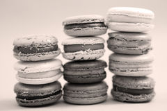 French macaron Royalty Free Stock Image