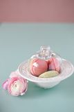 French macaron, the famous pastry Stock Images